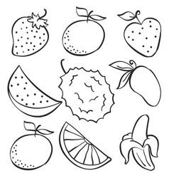 Set fruit fresh doodle style vector