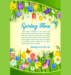 spring time holiday flowers greeting poster vector image