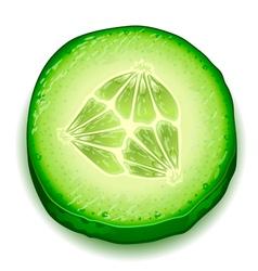 Fresh cucumber slice isolated on white background vector image vector image
