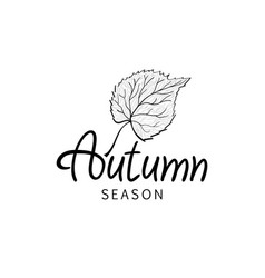 autumn leaves season black hand drawn calligraphy vector image
