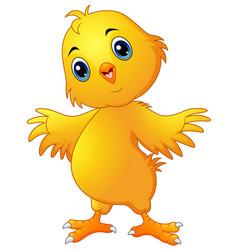 Cute chicken cartoon vector