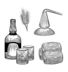 Set whiskey production process in hand drawn vector