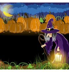 Wicked witch and Halloween pumpkins vector image vector image