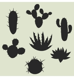 Collection of stylized cactuses and plants vector image vector image