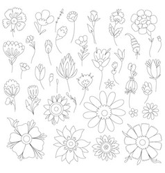 Antistress coloring page fantasy flowers and vector