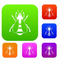 bee set collection vector image