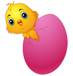 Cartoon chick cracked eggshell vector