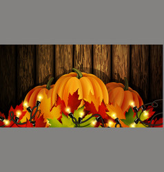 The of pumpkins isolated vector