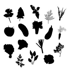 vegetables icons set black silhouettes vector image vector image