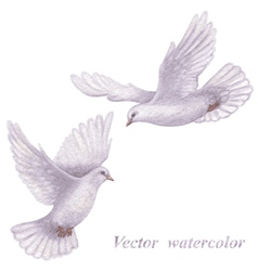 Flying doves vector image vector image
