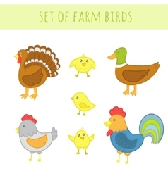 Set of farm birds vector image vector image