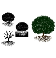 Big tree with roots vector image