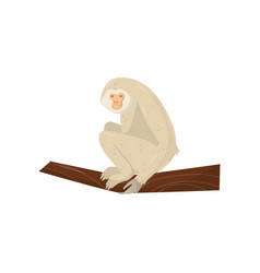 beige gibbon sitting on wooden branch wild vector image