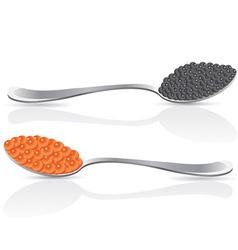 black caviar vector image