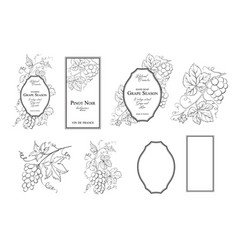 design label with grapes frame vector image