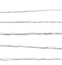 five horizontal torn layers of white paper vector image