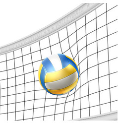realistic beach volley ball in net isolated vector image