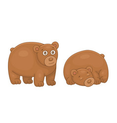 set brown bears vector image