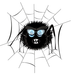 Spider in web vector image