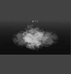 white fog or smok realistic fog atmosphere mist vector image