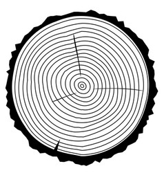 Wood rings vector