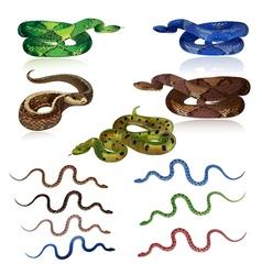 snake set vector image