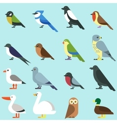 Different city birds icon vector image
