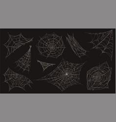 Spider web halloween cobweb spooky decoration vector