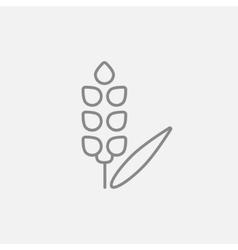 Wheat line icon vector image