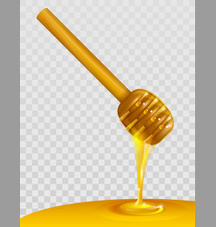 Wooden honey dipper and honey on transparent vector