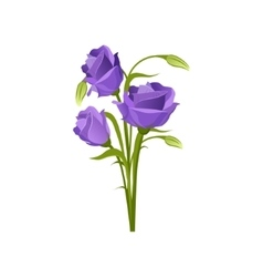 Eustoma Hand Drawn Realistic vector image