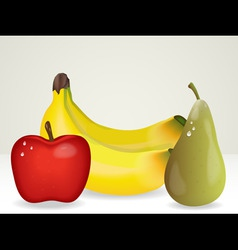bunch of fruit vector image