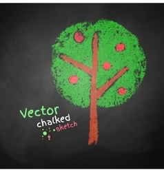 Chalked drawing apple tree vector