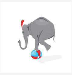 Circus elephant standing on the ball vector