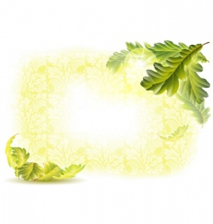 oak leaves background vector image