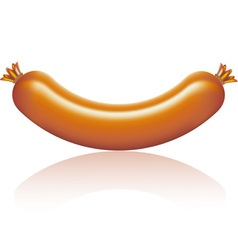 Sausage isolated vector
