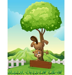A beaver doing a handstand above the empty wooden vector image vector image