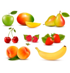 Big set of different fresh fruit and berries vector image