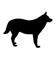 black silhouette of dog on white background of vector image