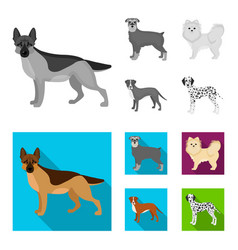 Dog breeds monochromeflat icons in set collection vector