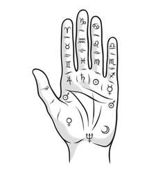 palmistry or chiromancy hand with zodiac signs vector image