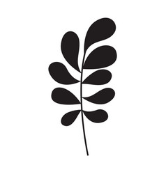 ramification with rounded leaves on monochrome vector image