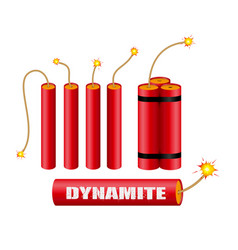 Set realistic dynamite with burning wick vector