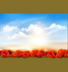 sunset sky background with red poppy flowers vector image