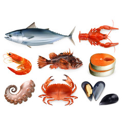 Fish crayfish mussels octopus 3d icon set sea vector