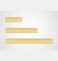 set of wooden rulers 10 20 and 30 centimeters vector image