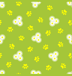 animal paw prints and daisies seamless pattern vector image