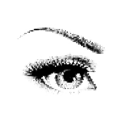 beautiful female eye vector image
