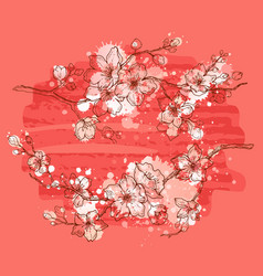 cherry blossom watercolor spring sakura flowers vector image