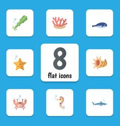 Flat icon marine set of cancer seashell shark vector
